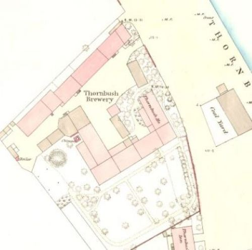 Map of 1867 showing the Thornbush Brewery